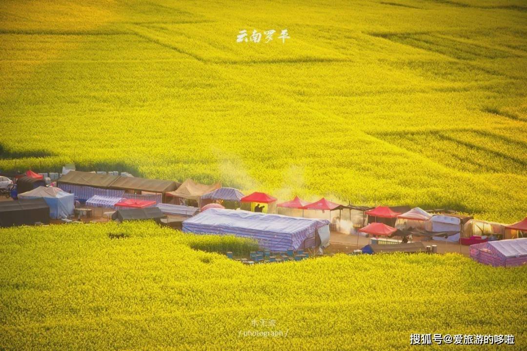 3月旅行地推荐!奔向我国的大好河山,不要辜负绝美的春光!