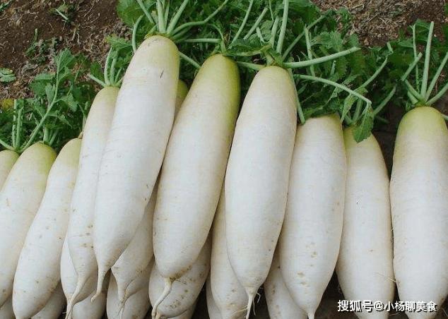 常吃萝卜好处多,通气排湿,但春季吃萝卜有1大禁忌,了解一下!