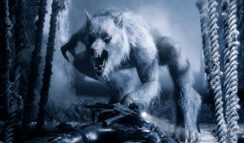 """为什么外国最出名的""""半人妖""""是狼人,而不是虎人或猫人呢?"""