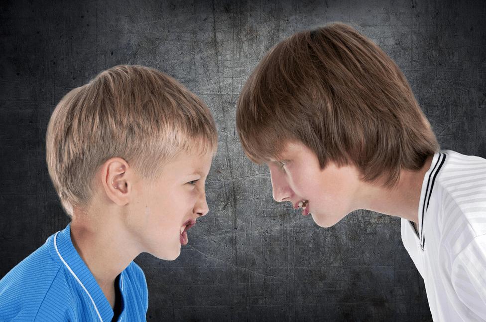 孩子之间的纠纷,让他们自行解决最好,搞不定的时候家长再出招