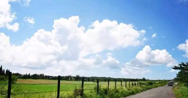 心理测试:喜欢哪一条田园小路?测谁一直在你身边等着你