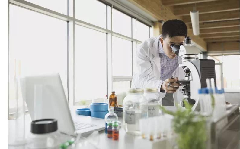 生物技术与生物技术产业概述