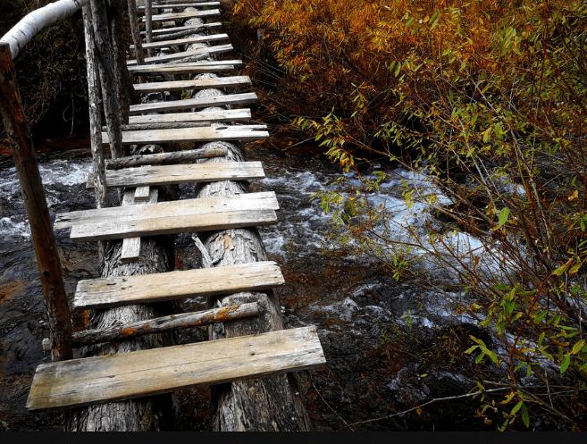心理测试:你会选择走向哪个独木桥?测你这辈子能活多少岁?  第3张