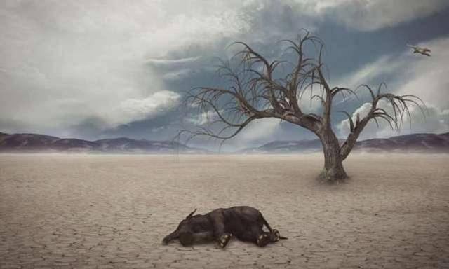 天道有常,注定生物大灭绝2700万年一次,周而复始