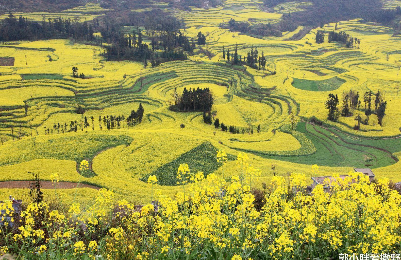 """原创             号称""""中国之最""""的景观,甘肃此景是国内唯一,只有震撼可言"""