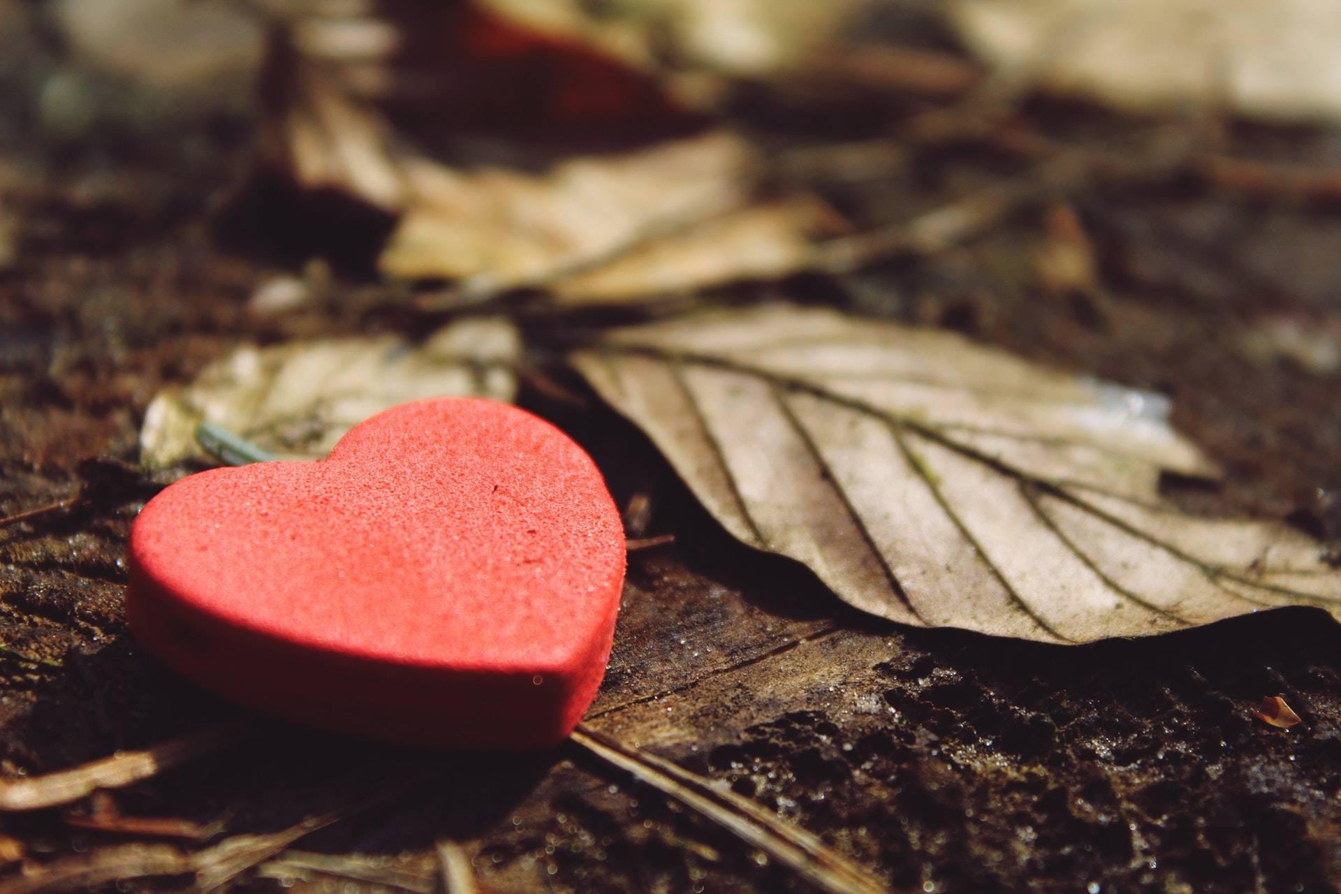 图片[4]-一个人说爱你,却不给你这些东西,意味着你是备胎-泡妞啦