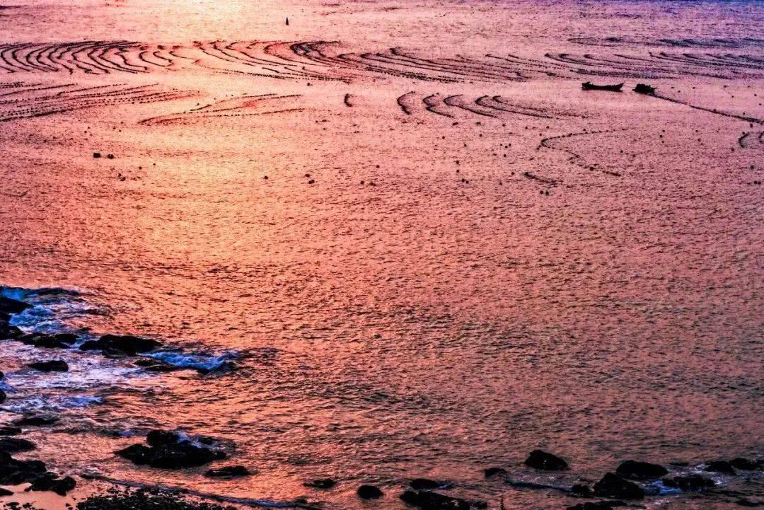 冰球打破在海边垂纶、捡贝壳