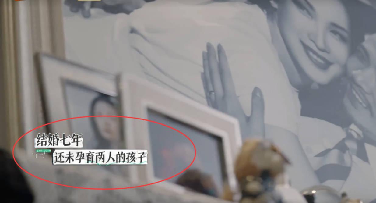 图片[8]-离婚综艺《再见爱人》首播,汪涵的同事不满二婚老婆7年不生孩子-番号都