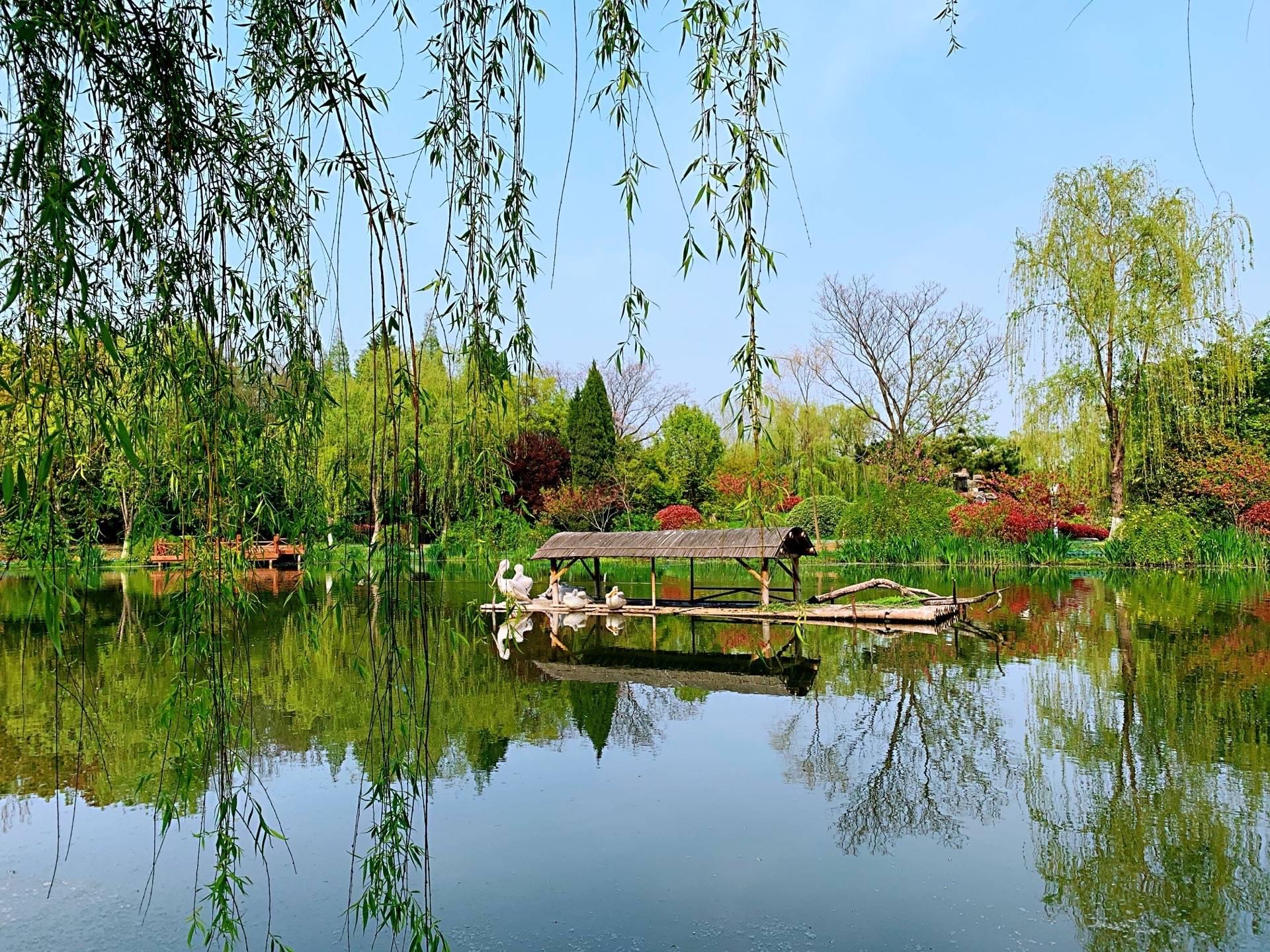 扬州这几个地方,你去过哪个?