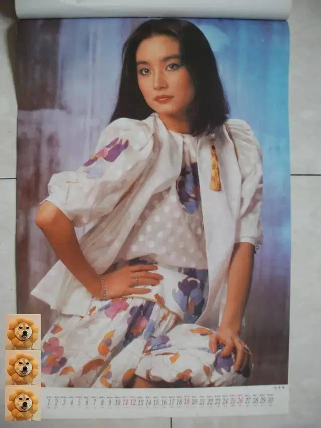 图片[6]-八九十年代的女明星挂历,复古又雷人,都是青春的记忆,好怀念啊-妖次元