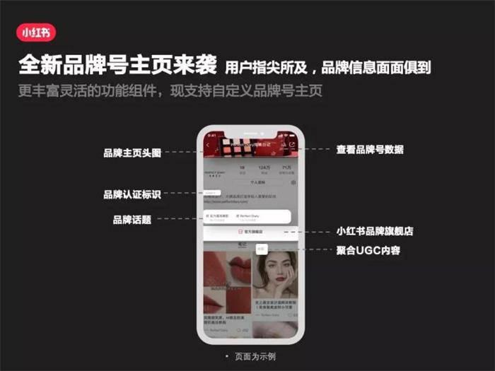 快速涨粉变现的项目:小红书视频号