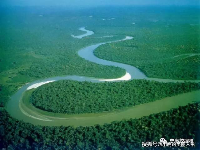 亚马逊雨林有多恐怖?颠覆你的三观,看看什么是真正亚马逊