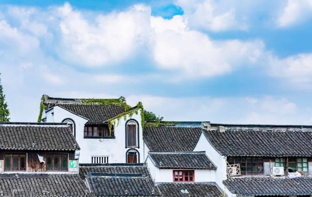 """孙若风:长江流域乡村文化的""""成长烦恼"""""""