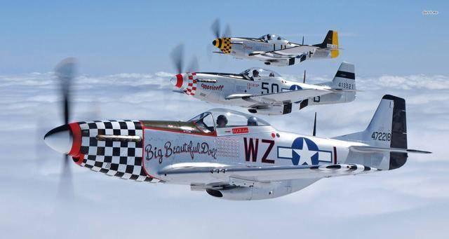 """二战P-51""""野马""""战斗机:天马行空的空战之王,盟军空权的象征_皇家空军"""