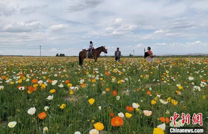 亿元文旅消费券助推新疆昌吉州文旅产业快速复兴
