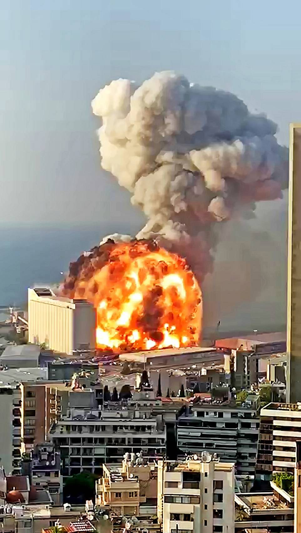 意大利顶级炸弹专家:贝鲁特大爆炸是导弹爆炸引起,不是硝酸铵_意大利新闻_意大利中文网
