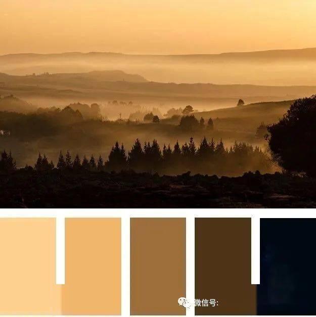 浓郁的大麦棕色好看又实用直到2022 #时尚颜色#