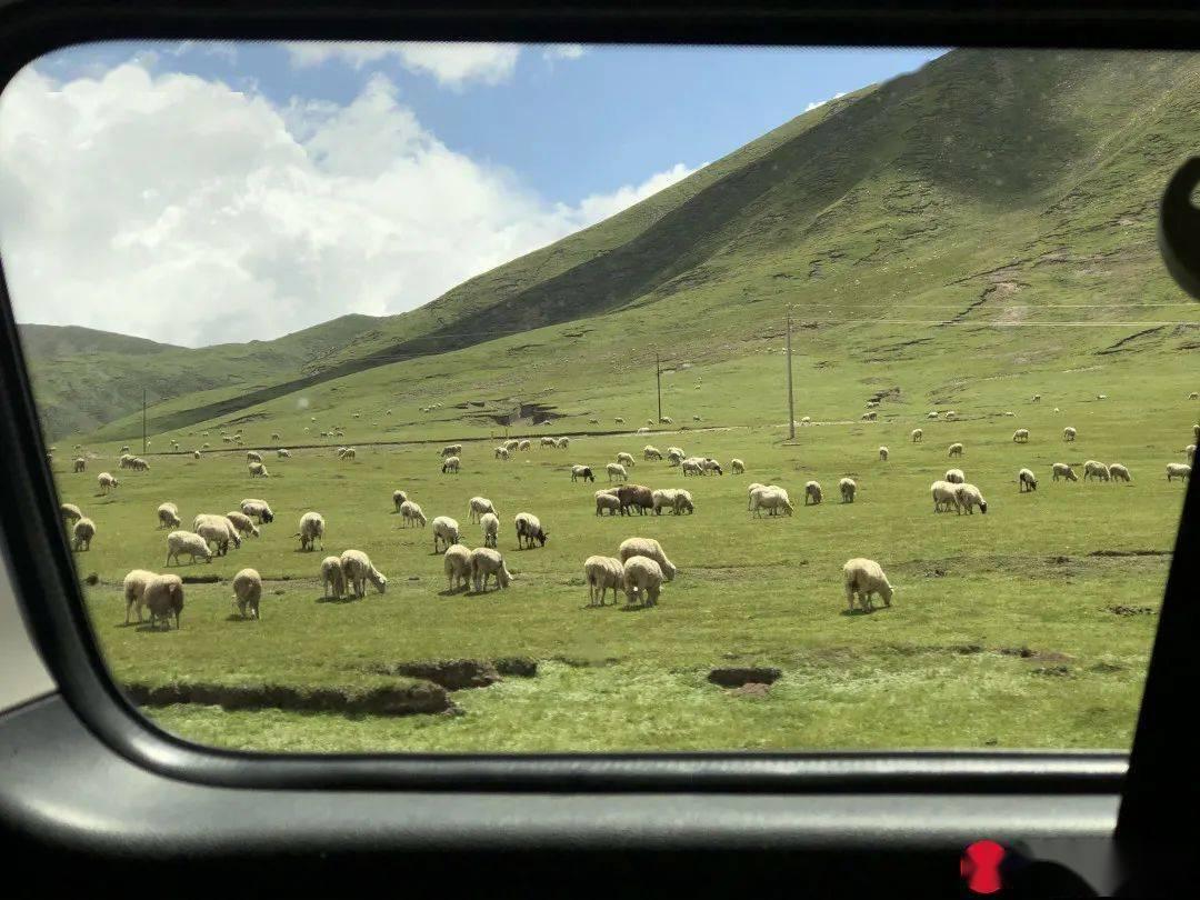 广州出发3h!全长3300公里的西北大环线,沿途每一站都是惊喜!(下)