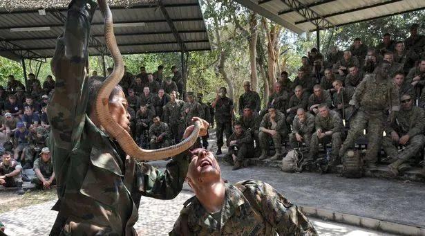 动保人士盯上美军演习:这样做或引发疫情