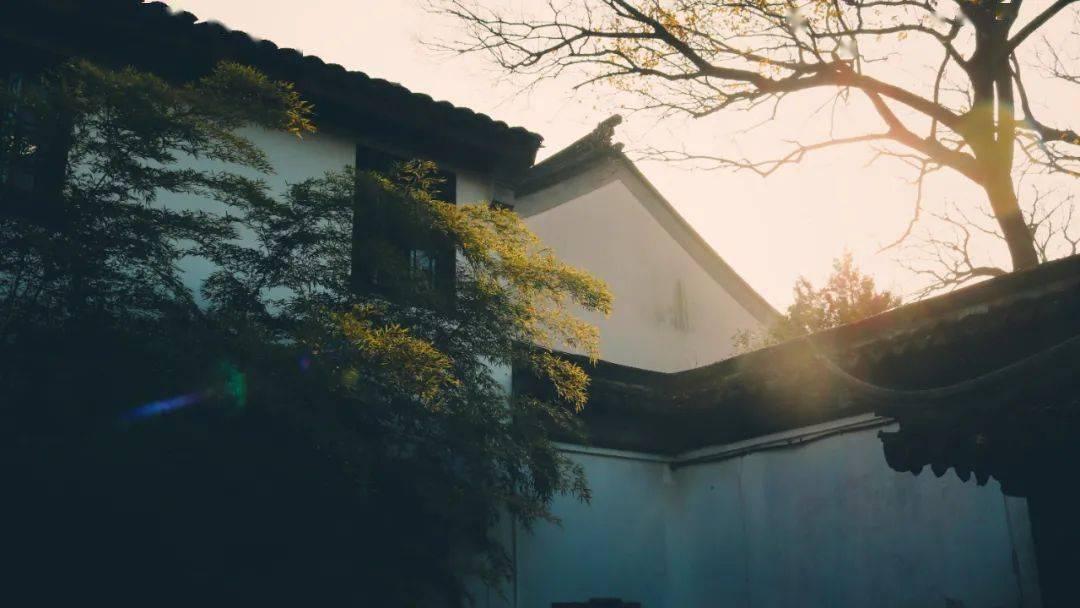 """乡村振兴案例:临安是如何进行""""村庄运营""""?【智美旅游策划 第2297期】"""