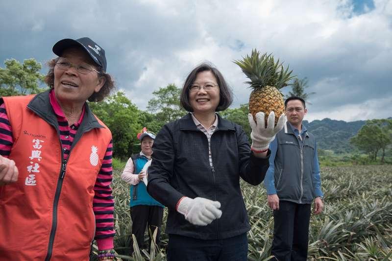 台湾凤梨外销大陆受阻,民进党:呼吁所有民众一起买台湾凤梨