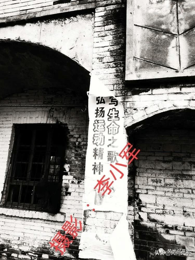 兴平多少人口_台湾有多少人口
