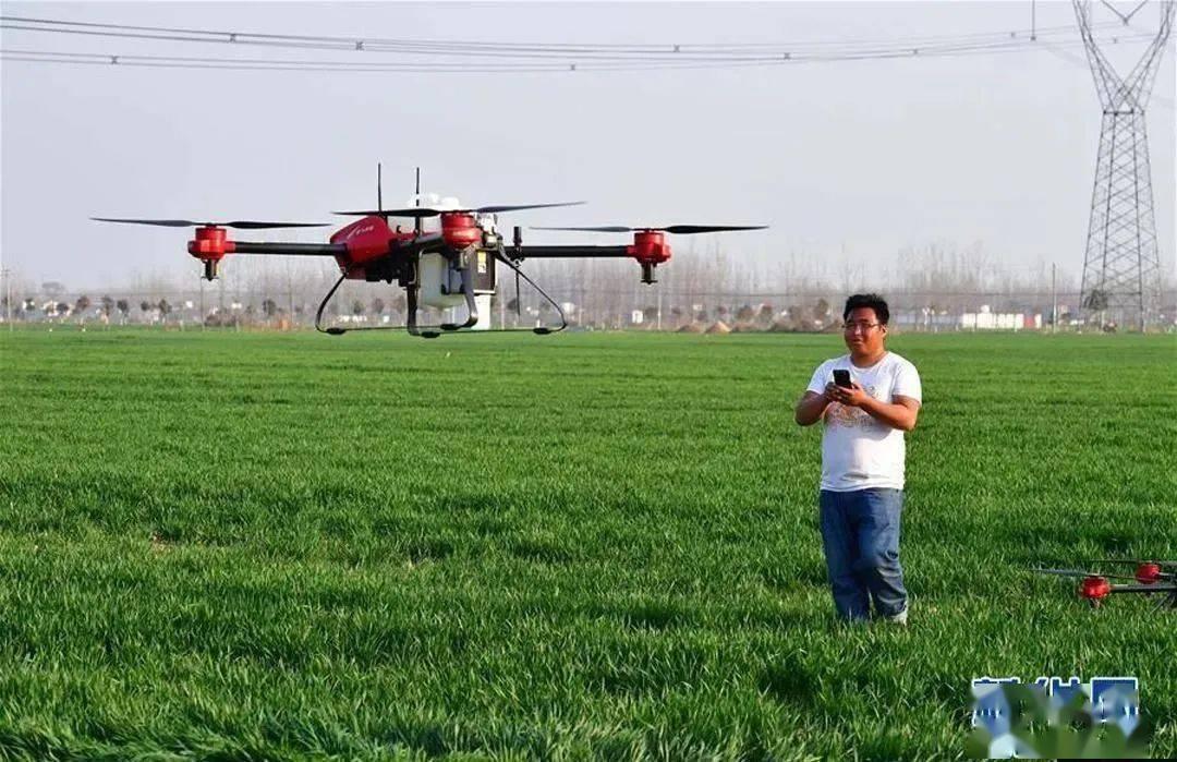 新版农残限量标准发布 四大亮点抢先看