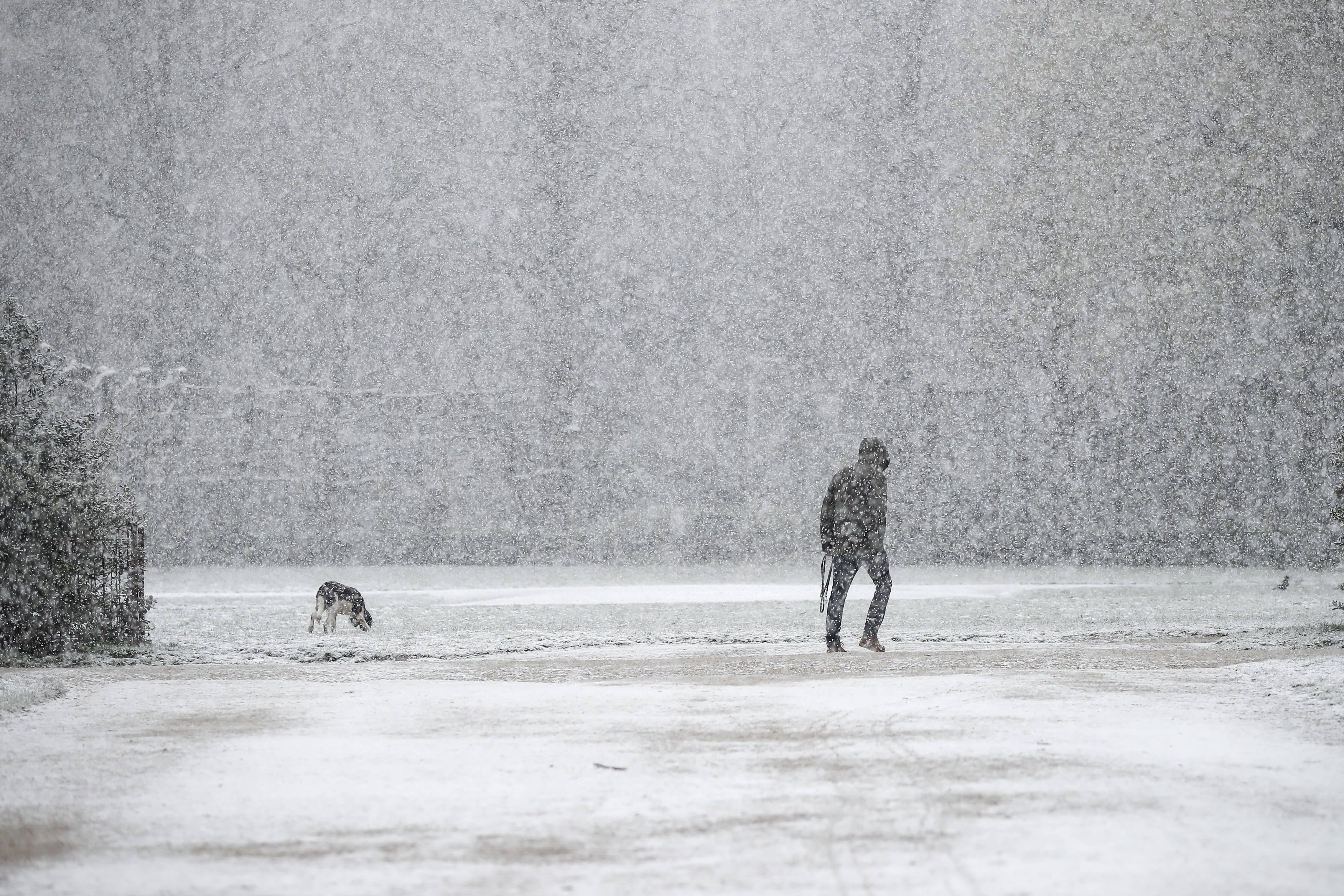 比利时布鲁塞尔迎春雪