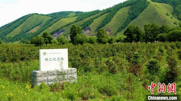 """从""""颜值""""到""""价值"""":中国最大国有林区的""""凡尔赛""""经济"""
