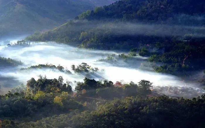 勐海县布朗山乡:守住绿水青山,才能有好茶山