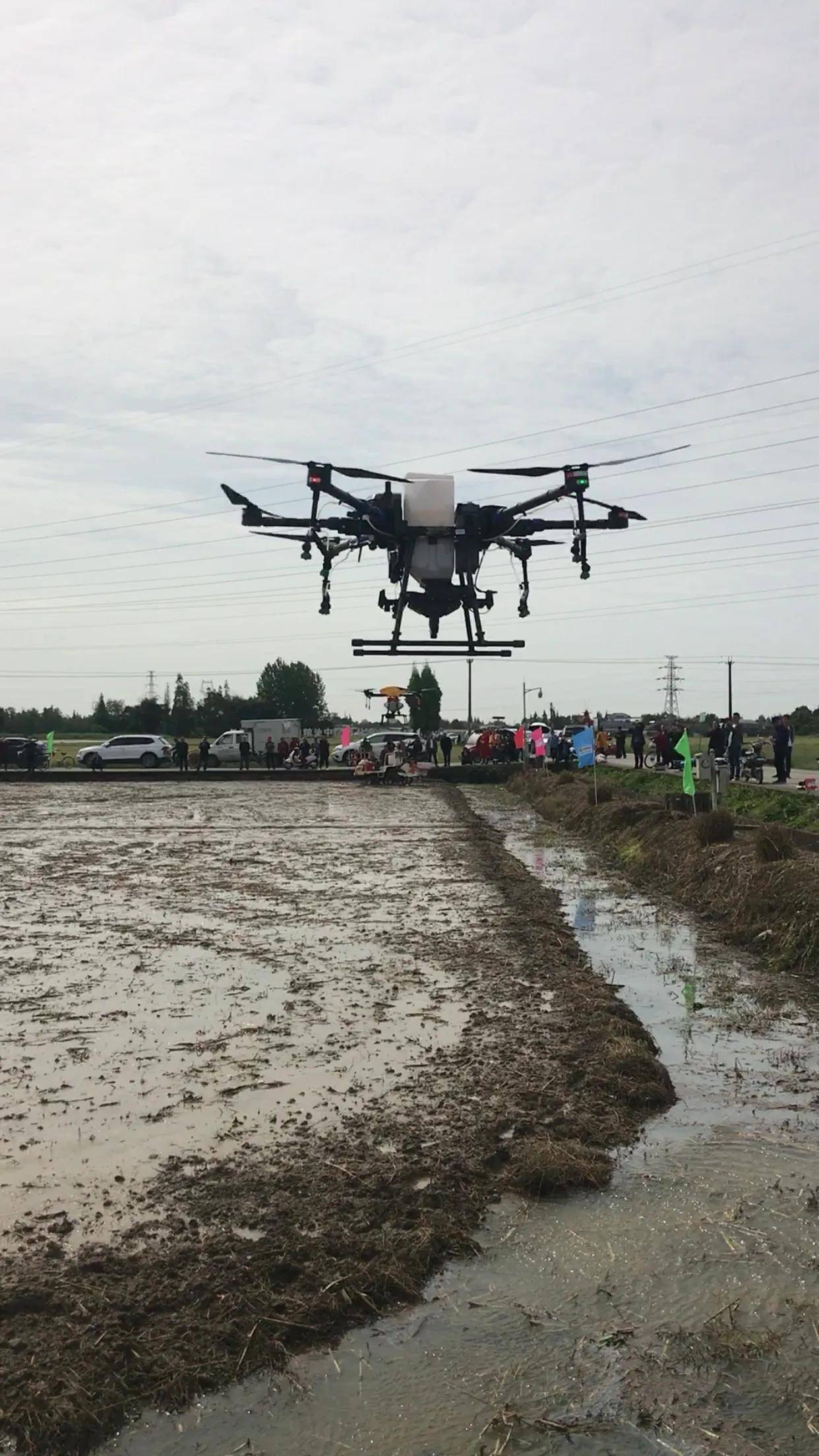 崇州举行水稻智能农机播栽现场会:无人驾驶机插秧,每小时可插秧5亩以上