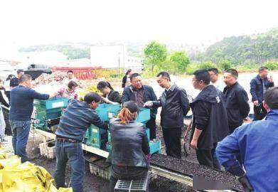 节本增效 通江工厂化育秧 2000 亩