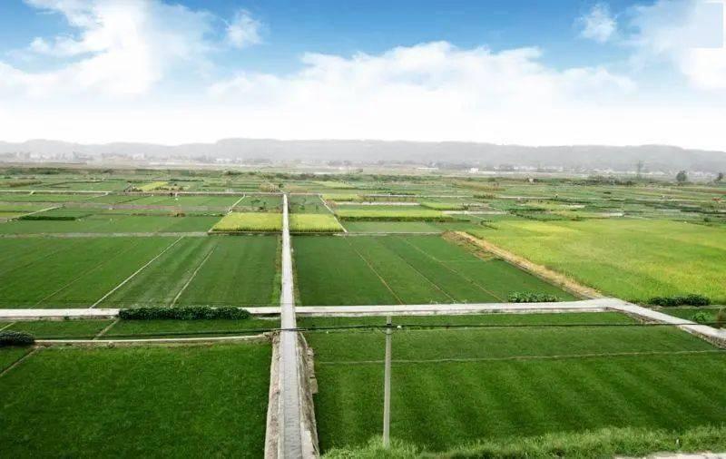 2021年农业产业强镇创建名单出炉,四川18个镇(乡)入选!