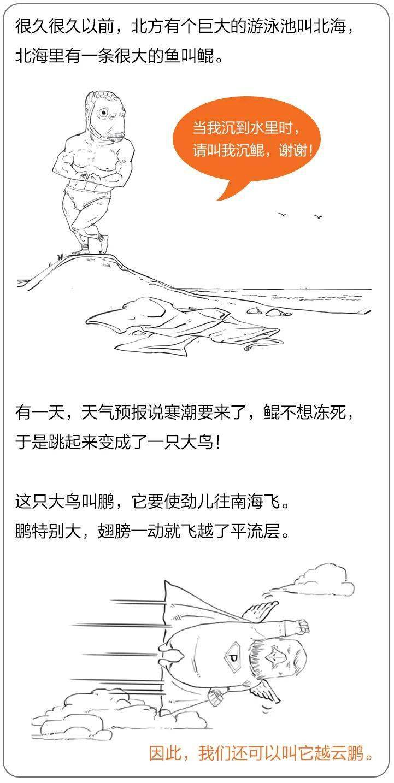 从猫步中可以学到什么?太极拳的基本步法  吴阿敏太极猫步教学