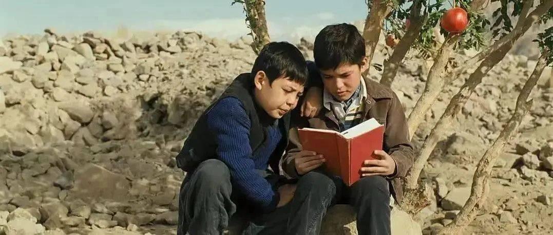 重温经典《追风筝的人》,带你了解阿富汗人民的爱与伤
