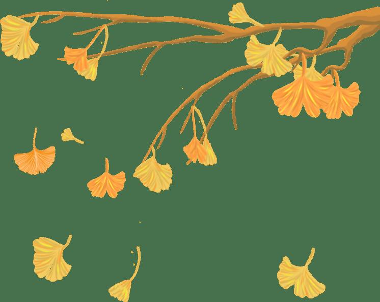 秋分:秋色平分,碧空万里